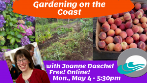 gardening with joanne image