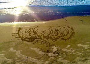 Phoenix Beach Art